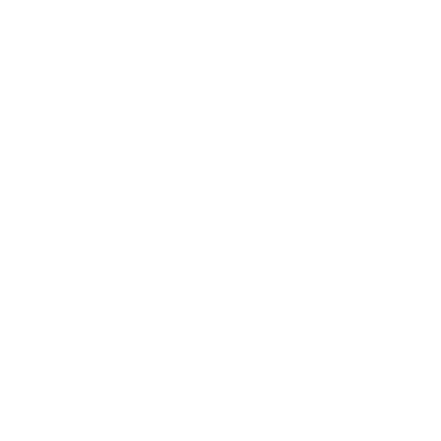 Icone Data Center